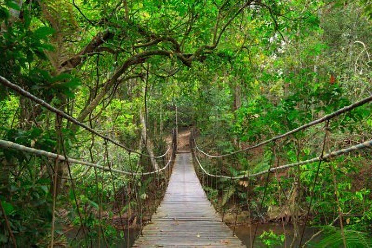 Viaggio di nozze in thailandia isa sposa for Come costruire una palestra nella giungla